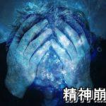 #26【薬の飲み合わせ 幻覚 幻聴 意識低下 精神崩壊!!(14)】