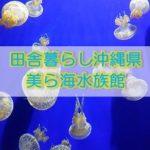 田舎暮らし沖縄観光・美ら海水族館にいって来た!壮大ジンベンザメ