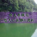 田舎暮らし埼玉観光・涼を求めて秩父岩畳で有名な長瀞のライン下り