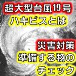 2019年10月11日台風19号!停電リスクとは台風対策の紹介