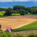 【2019田舎暮らし&移住ランキング上位まとめ住みやすさデータベース 】